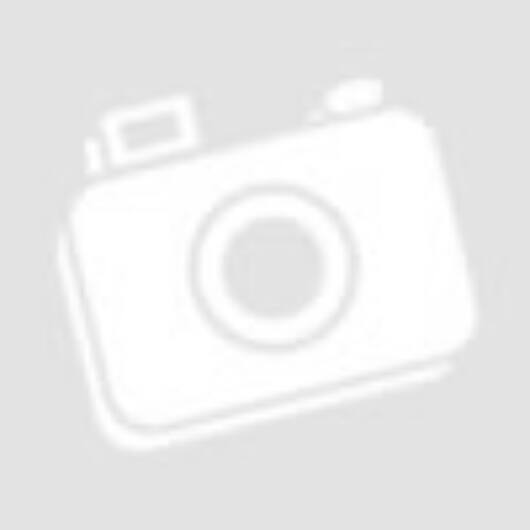 ROADINGER Flightcase 4x Audience Blinder 2x100W with wheels
